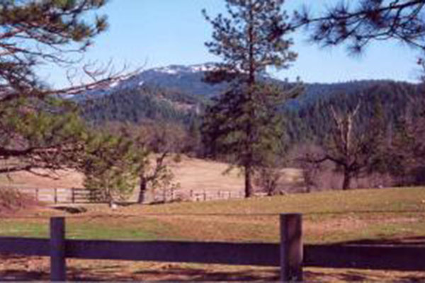 Rough Diamond Ranch