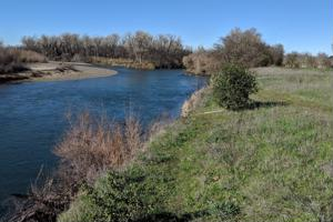 Sacramento River - 21 Acres
